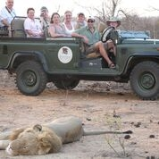 Bateleur Camps Bush Open vehicle Safaris