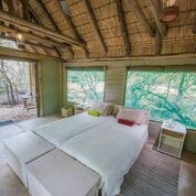 Bateleur Camps Group accommodation