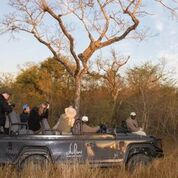 Dulini River Lodge, Private Guided in Sabi Sands