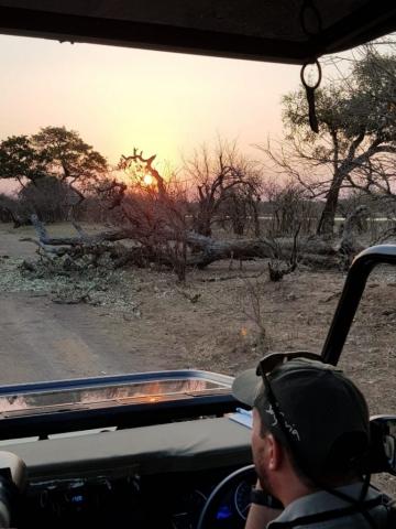 Safaria 2