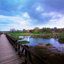 Safaria – Sabi river sun 3
