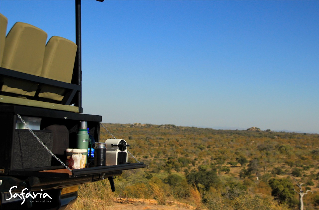 Morning Open Vehicle drives with Safaria in the Kruger Park
