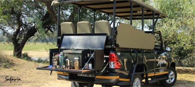 Premium Kruger Park Day Safari tour