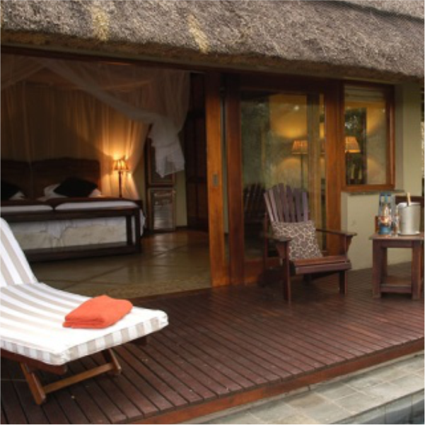 Safaria – thornybush