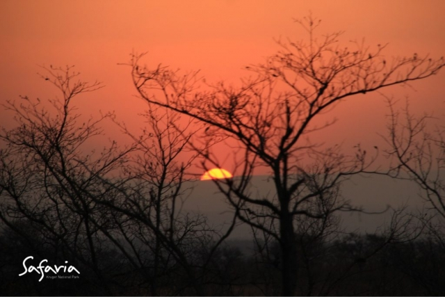 Sunset in the Kruger National Park with Safaria