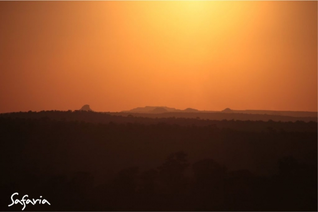 Kruger National Park Landscape sunset