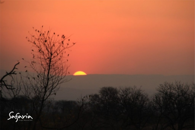 Safaria Kruger National Park Sunset
