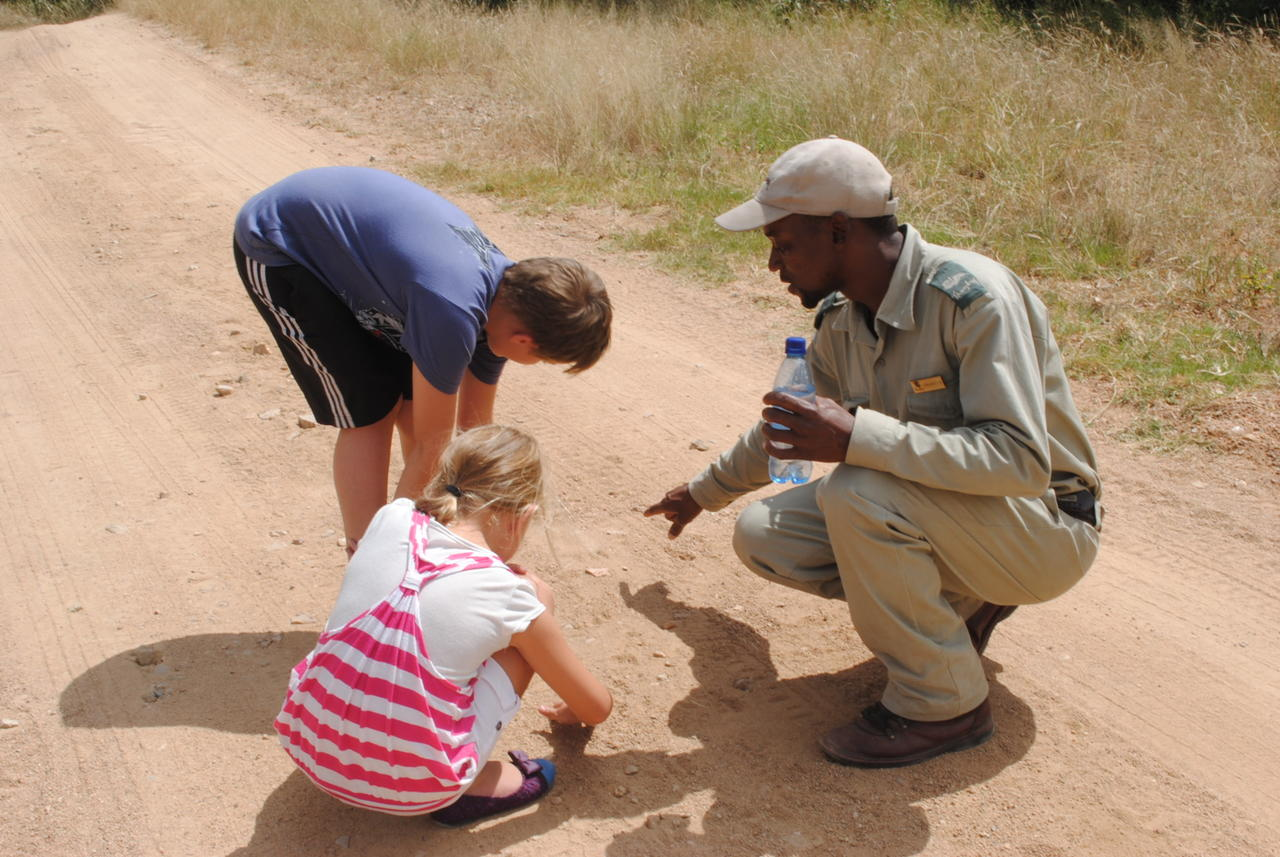 Thornybush Game Lodge, Children Bush Tracking activity