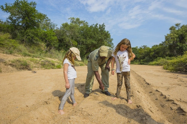 Thornybush Game Lodge, Children Bush Walk activity