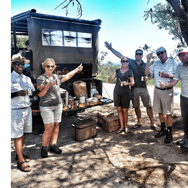 on safari on kruger national park