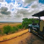 Safaria_Nkumbe View on a Full Day Kruger Park Safari