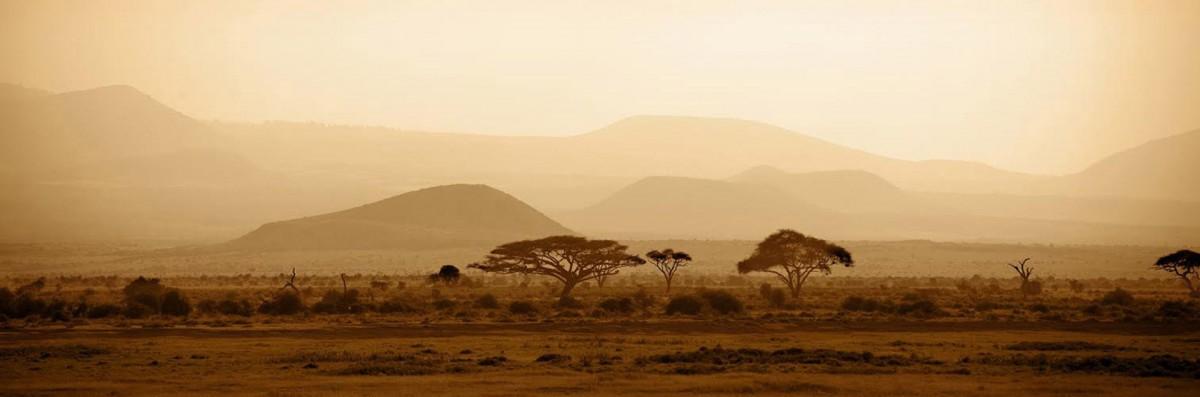 safariatop