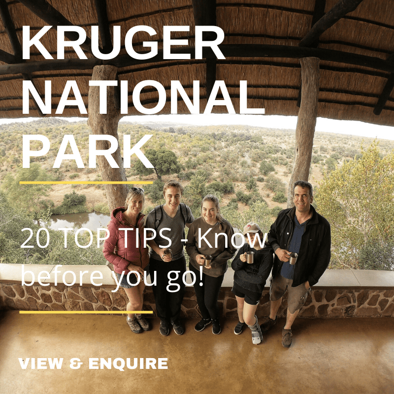20 Top Tips to visit the Kruger National Park