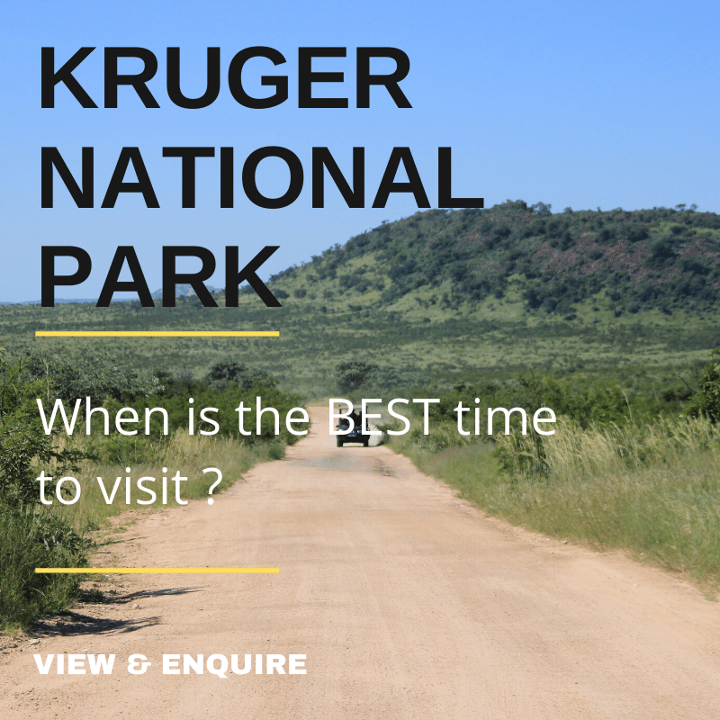 When is the best time to travel in the Kruger National Park