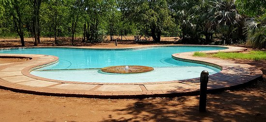 Letaba Pool Area