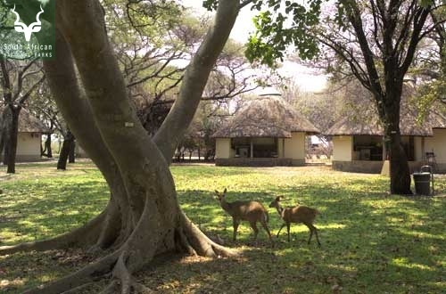 Letaba_2Sleeper Bungalow