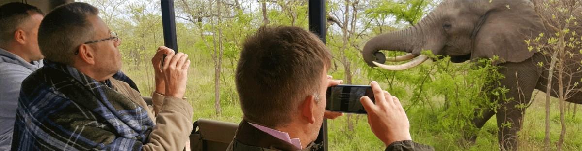 Safaria-day-safaris-header-image