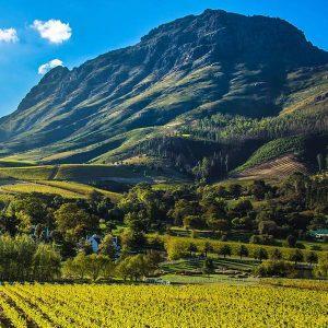 Cape Winelands Feat