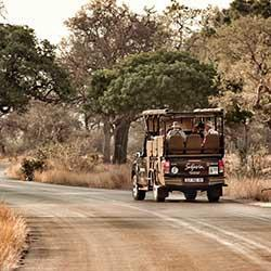 Ovetnight Kruger Park Safaris