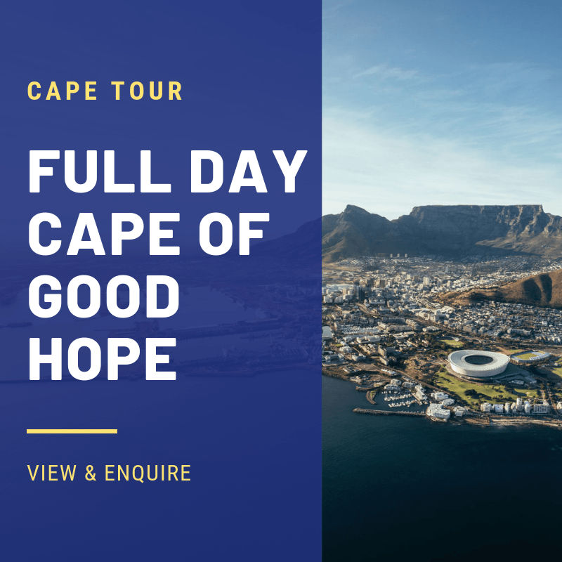 CAPE OF GOOD HOPE TOURS