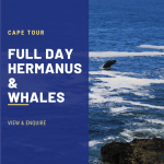 1 CT Hermanus
