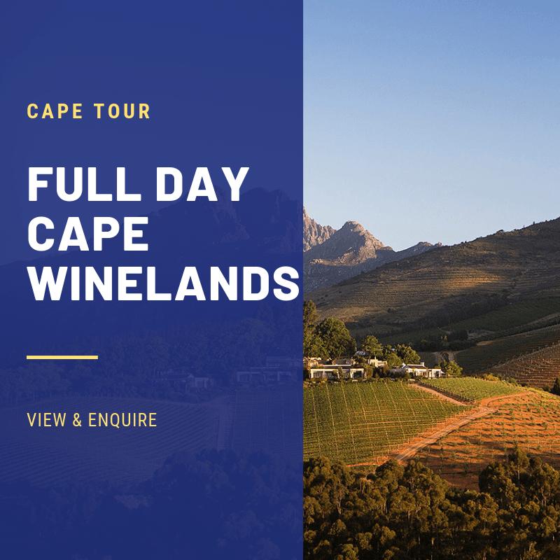 CAPE WINELANDS TOURS