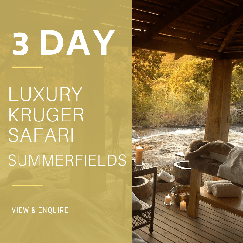 3 Day Lux KNP SF