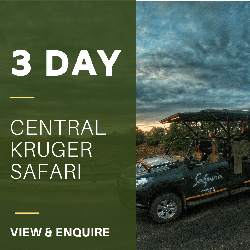 3 Day central KNP