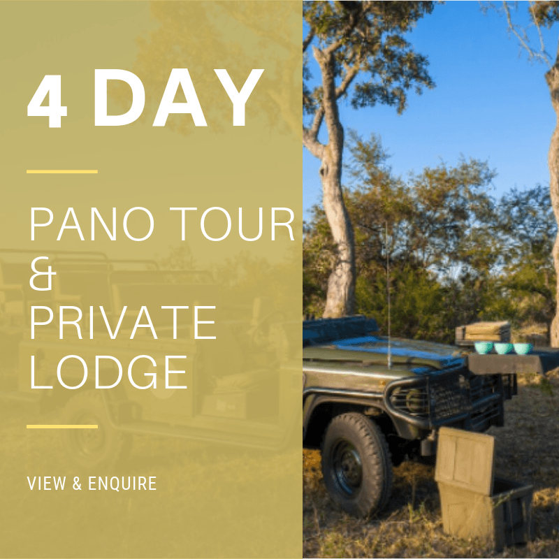 4 Day Pano & Private