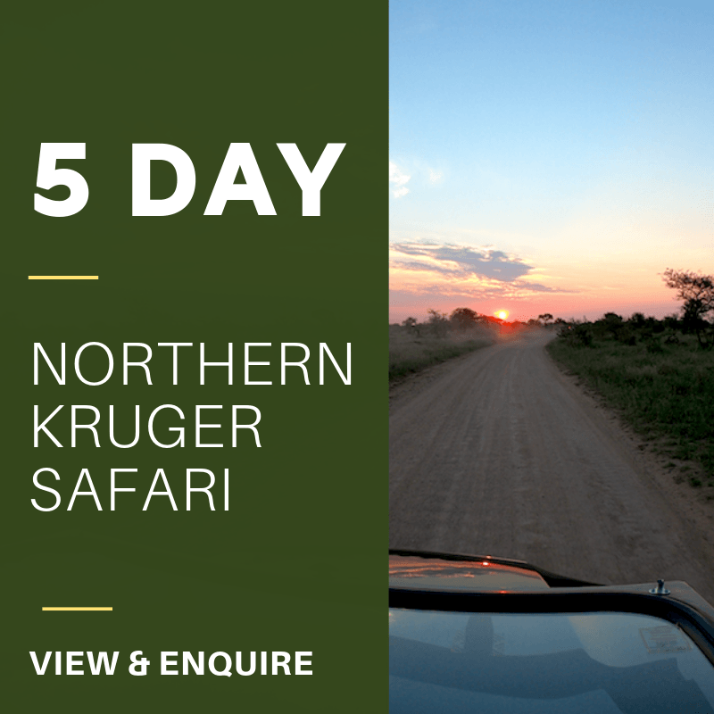 5 Day northern KNP