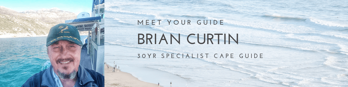 Brian Curtin