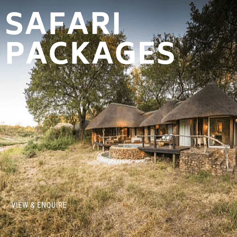 Safari Packages