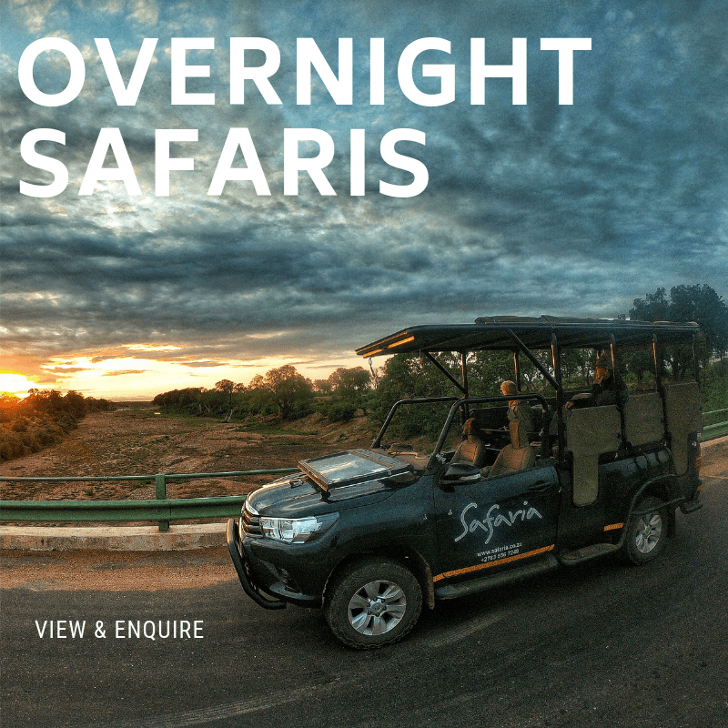 Overnight Kruger Park Safaris