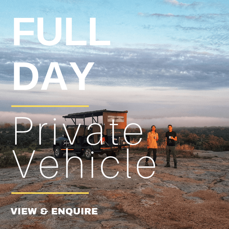 Full Day PVT Vehicle