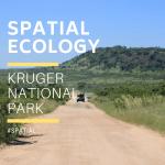 Spatial safaris 2