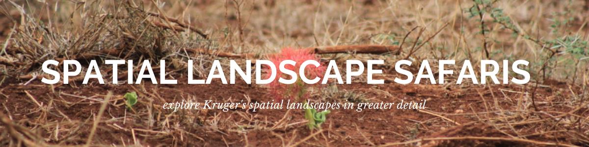 Kruger Park Spatial Landscape Ecology