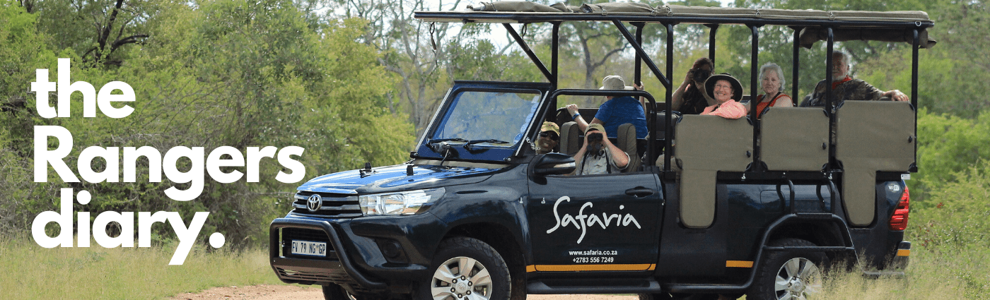 The Rangers diary KRUGER NATIONAL PARK
