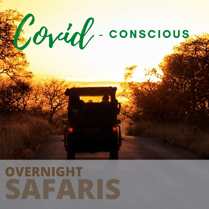 Covid concious overnight safaris