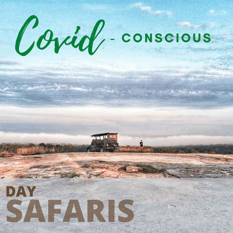 Covid conscious day safaris