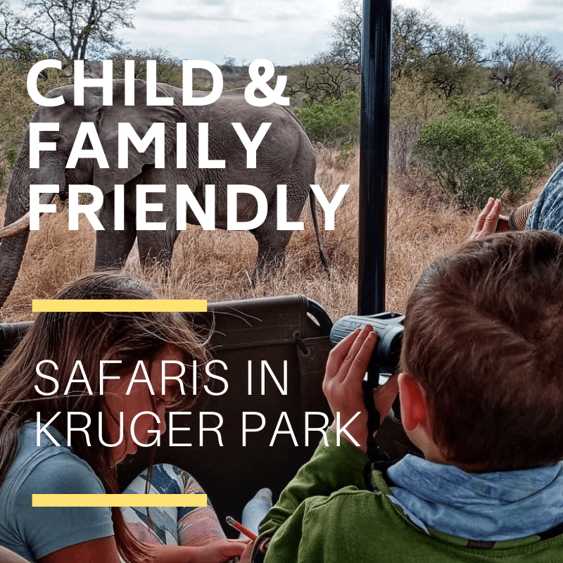 Child friendly kruger safaris