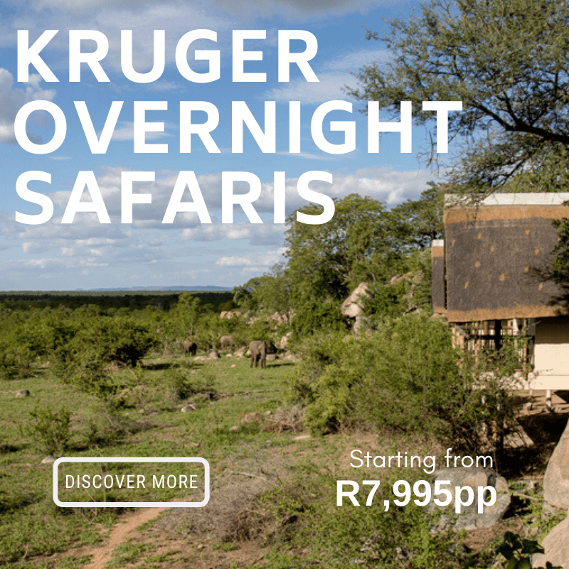Kruger Overnight from R7995